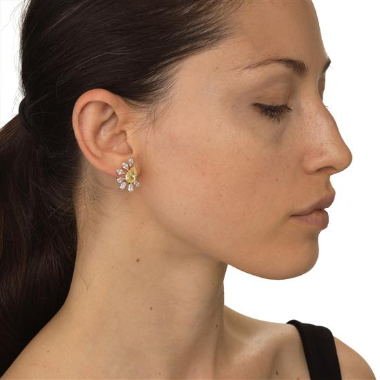 Earring With Diamond in 18K White Gold